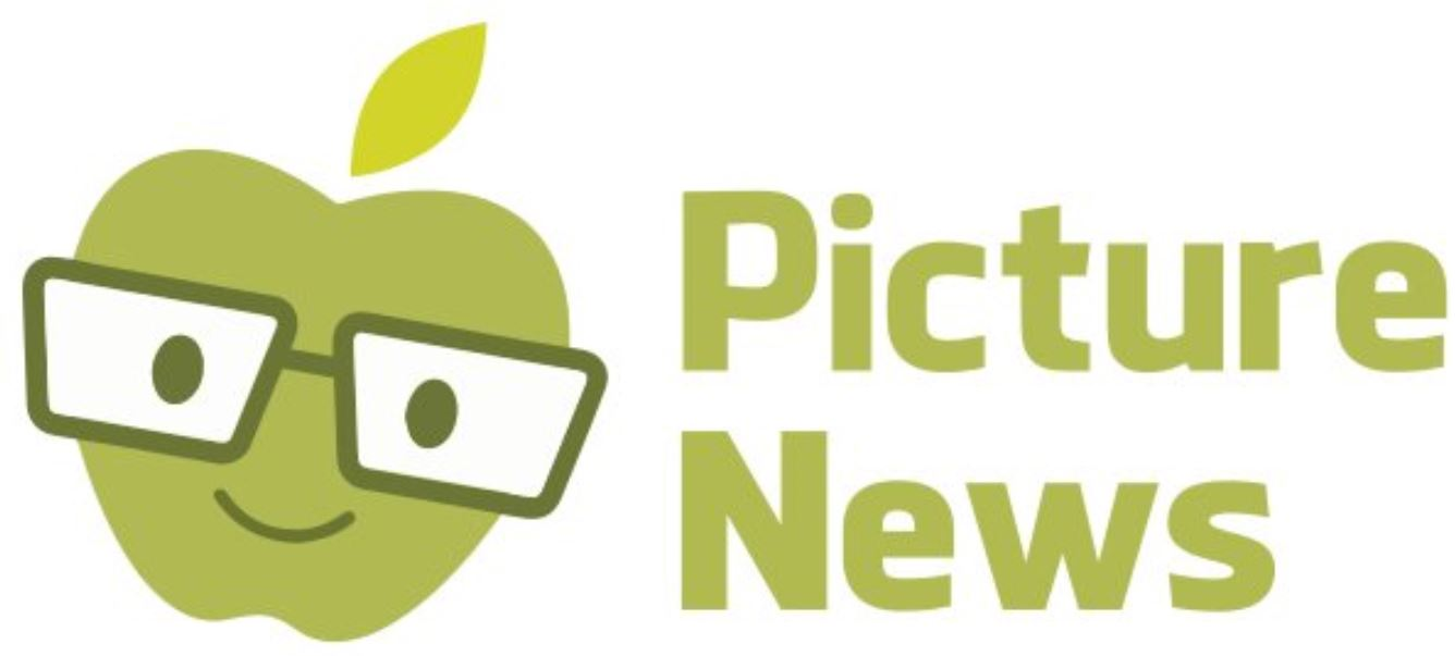 Picture News Logo